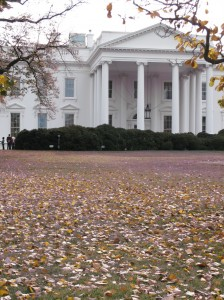 White House-Fall