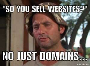 you sell websites? No just domains
