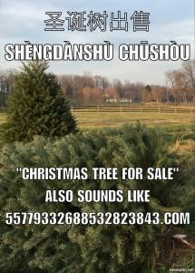 Christmas tree meme about numeric domains