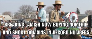 domain Shane auction recap meme 12/13