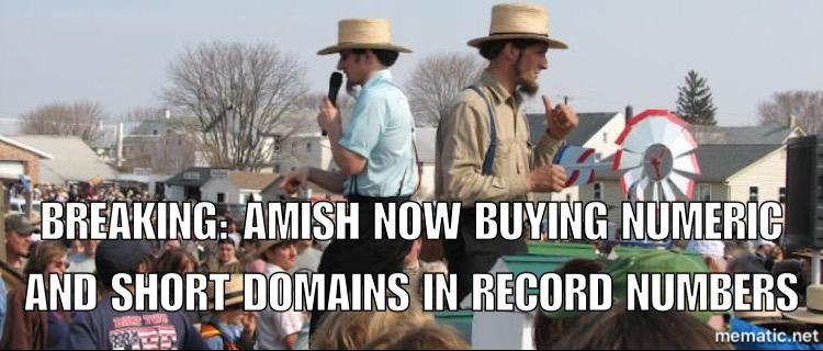domain Shane auction recap meme 12/13