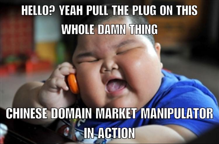 domain shane auction recap jan 2nd
