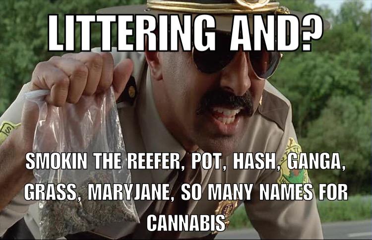 dsad auction recap cannabis meme