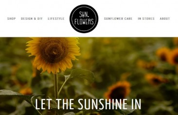 New gTLD Development: Sun.Flowers, Rise.Global, THM.Help