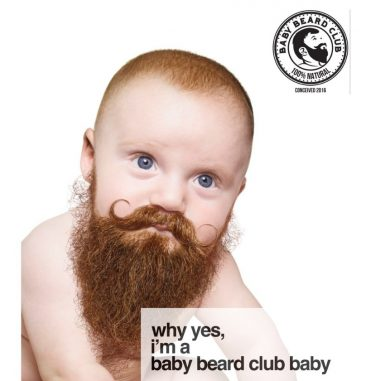 Recent Domain Sales That Have Been Developed (pics): BabyBeard.com, WebTraffix.com, More